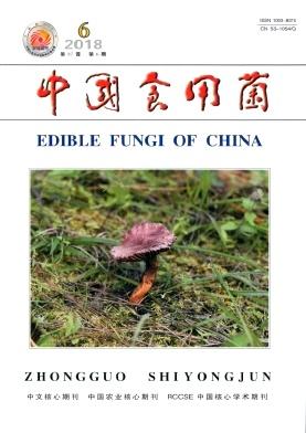 中国食用菌核心期刊论文发表