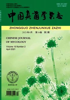 中国真菌学杂志杂志论文发表